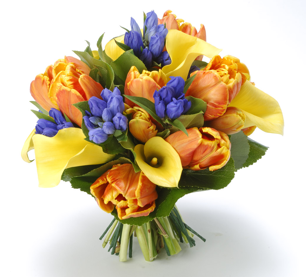 Administrative Professionals Day Is April 23rd City