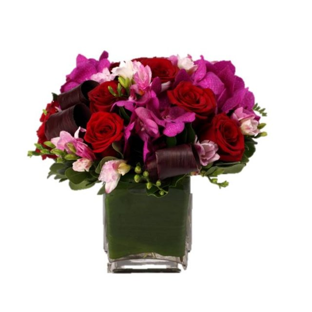 Purple Flowers | Same-Day NYC Flower Delivery | City Blossoms